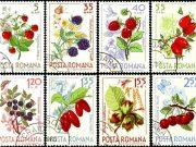 Купить марки почтовые флора и фауна