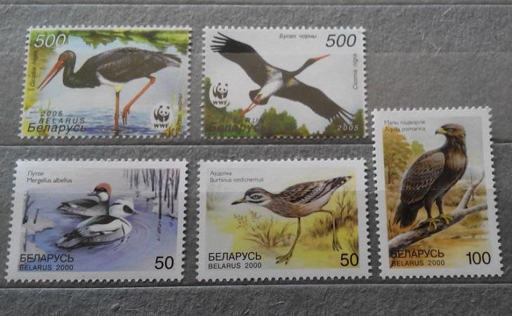 Почтовые марки с птицами Беларусь