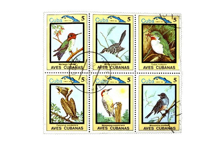 Кубинская марка с фауной