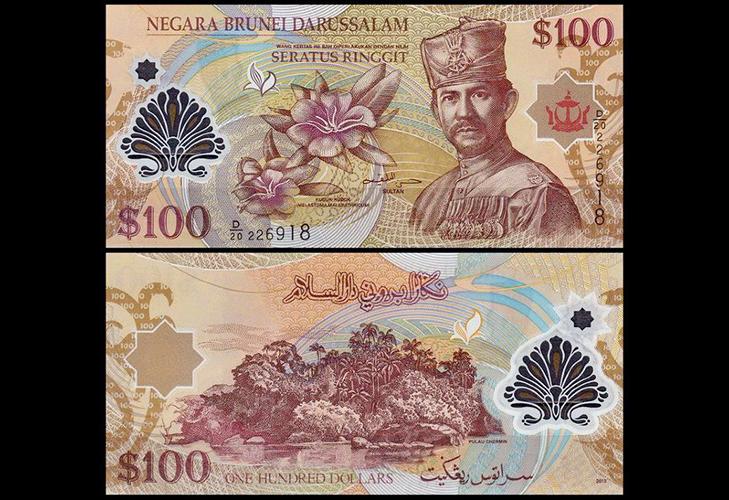 Брунейский доллар из пластика