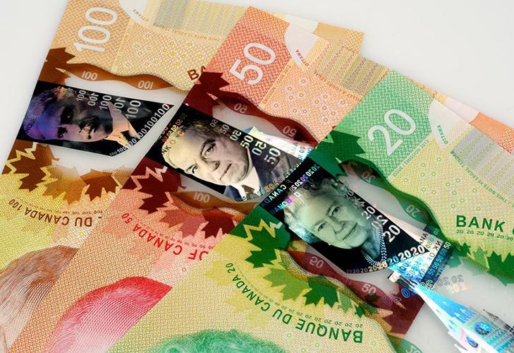 Канадский доллар из пластика